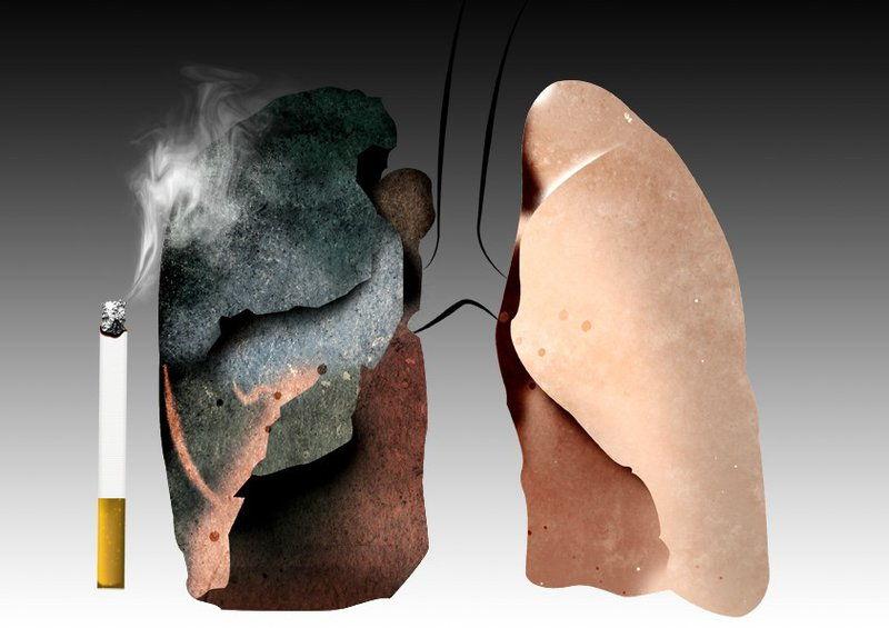cây thuốc chữa bệnh phổi, Phòng bệnh và trị dứt điểm bệnh phổi hiệu quả với 5 cây thuốc Nam