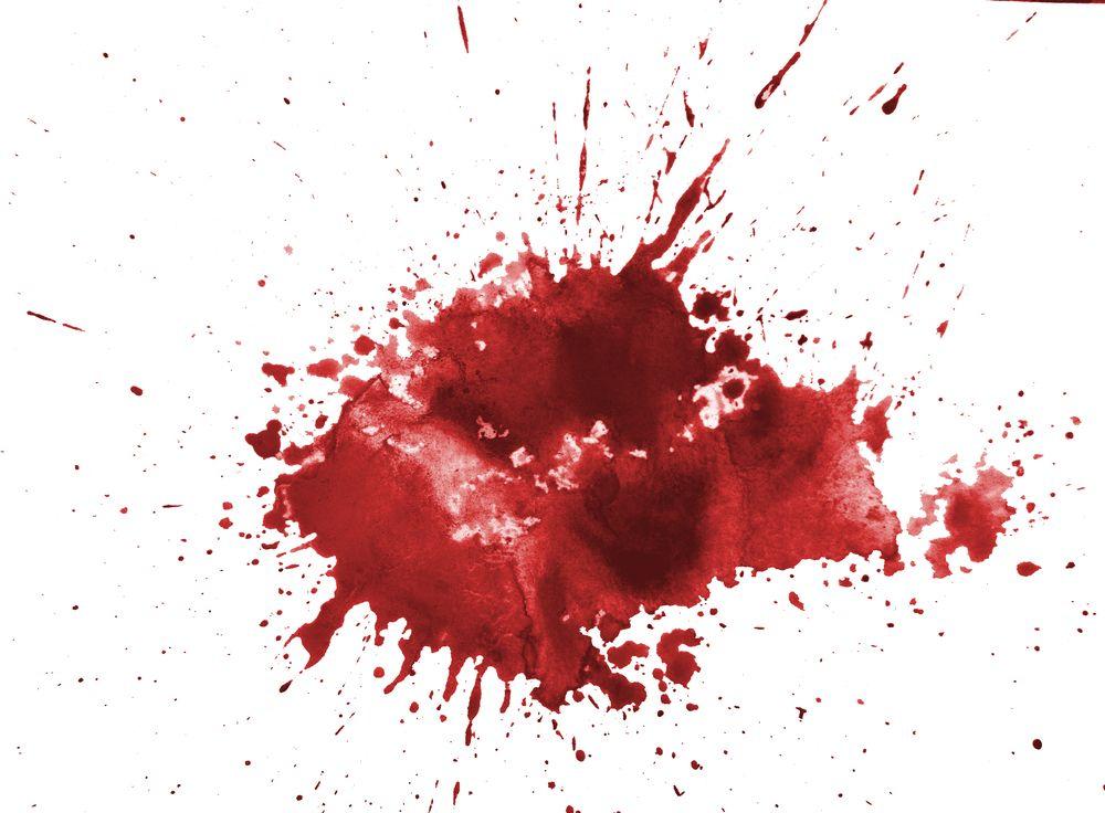 cây thuốc bổ máu